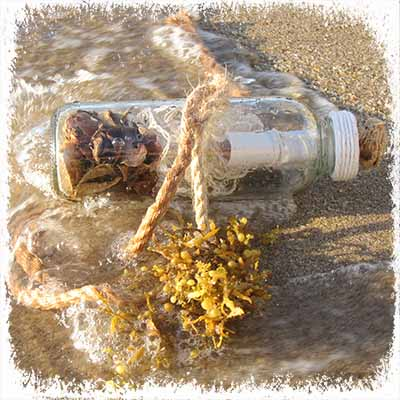 Message in a Bottle Gift Certificate